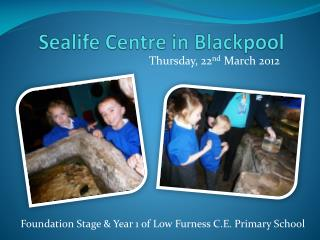 Sealife Centre in Blackpool