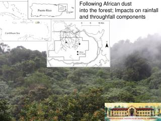 Following African  dust  into  the  forest; Impacts  on rainfall  and  throughfall components