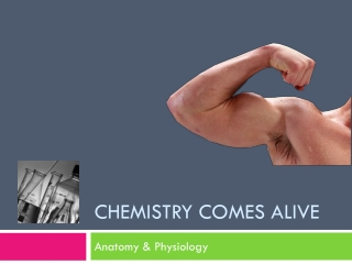 Chapter 2: Chemistry Comes Alive