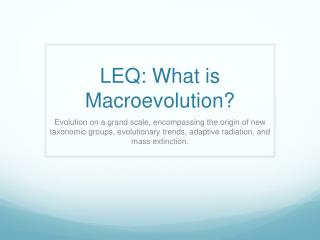 LEQ: What is Macroevolution?