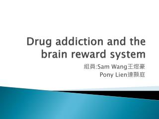 Drug addiction and the brain reward system