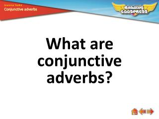 What are conjunctive adverbs?