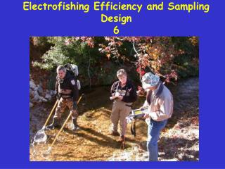 Electrofishing Efficiency and Sampling Design 6