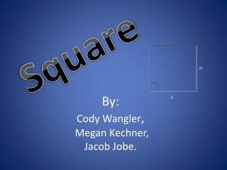 By : Cody  Wangler ,  Megan Kechner, Jacob Jobe.