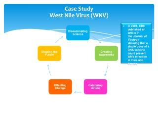 Case Study  West Nile Virus (WNV)
