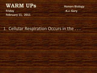 WARM UPs	 Honors Biology Friday						 -K.J. Gary February 11,  2011