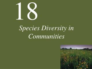 Species Diversity in Communities