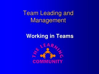 Team Leading and Management