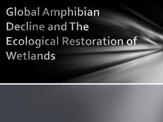 Global Amphibian Decline and The Ecological Restoration of Wetlands