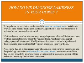 HOW DO WE DIAGNOSE LAMENESS  IN YOUR HORSE ?
