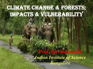 Climate Change & Forests; Impacts & vulnerability