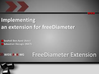Implementing  an extension for  freeDiameter