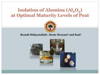 Isolation of Alumina (Al 2 O 3 ) at Optimal Maturity Levels of Peat