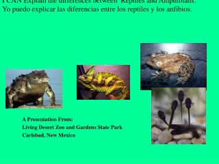 I CAN Explain the differences between  Reptiles and  Amphibians.