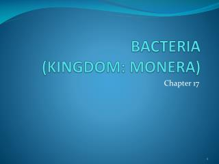 BACTERIA (KINGDOM: MONERA)