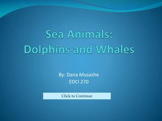 Sea Animals: Dolphins and Whales
