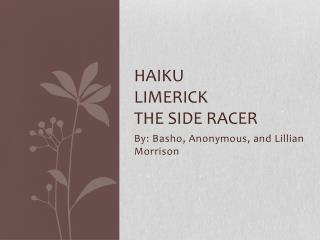 Haiku limerick the side racer