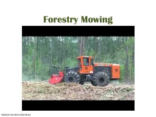 Forestry Mowing