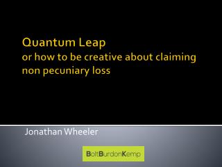 Quantum Leap or how to be creative about claiming  non pecuniary loss