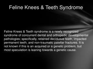 Feline Knees & Teeth Syndrome