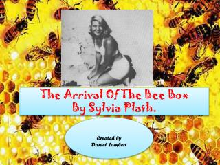 The Arrival of the Bee Box