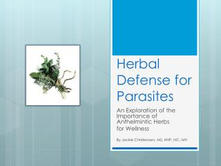 Herbal Defense for Parasites