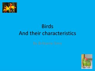 Birds And their characteristics