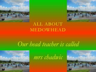 All about Medowhead