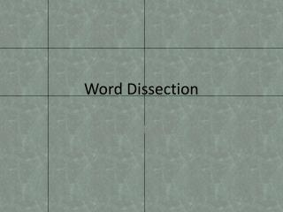 Word Dissection