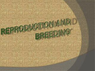 Reproduction and Breeding