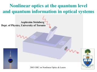 Nonlinear optics at the quantum level  and quantum information in optical systems
