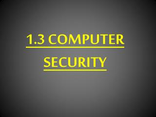 1.3 COMPUTER SECURITY