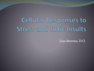 Cellular Responses to Stress and Toxic Insults