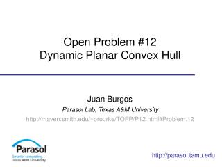 Open Problem #12 Dynamic Planar  Convex Hull