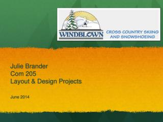 Julie Brander Com 205 Layout & Design Projects