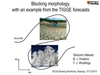 Blocking morphology,  with an example from the TIGGE forecasts