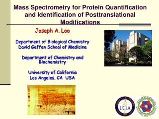 Mass Spectrometry for Protein Quantification and Identification of Posttranslational Modifications