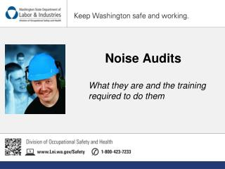 Noise Audits