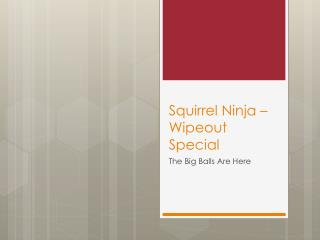 Squirrel Ninja – Wipeout Special
