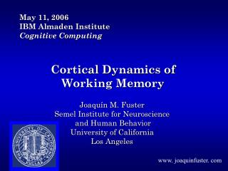 Cortical Dynamics of Working Memory