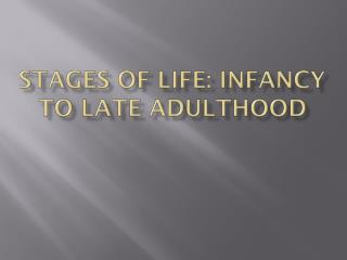 Stages of Life: Infancy to Late Adulthood