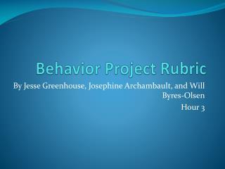 Behavior Project Rubric