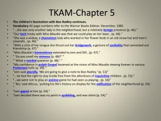 TKAM-Chapter 5