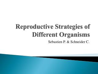 Reproductive Strategies of Different Organisms