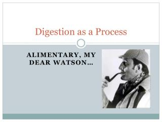 Digestion as a Process