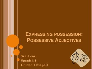 Expressing possession: Possessive Adjectives