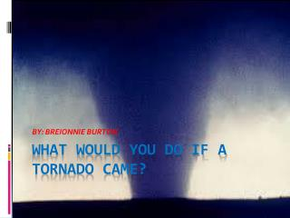 What would you do if a tornado came?