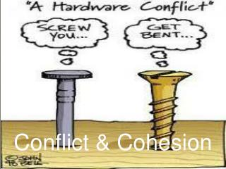 Conflict & Cohesion