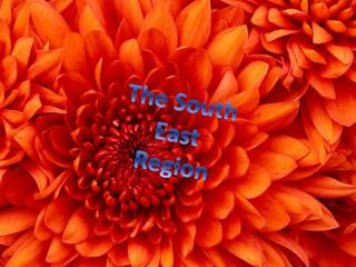 The South East Region