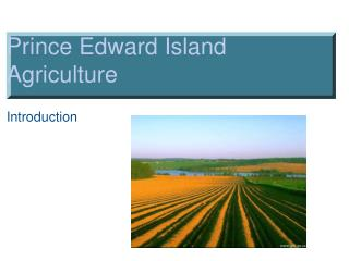 Prince Edward Island  Agriculture